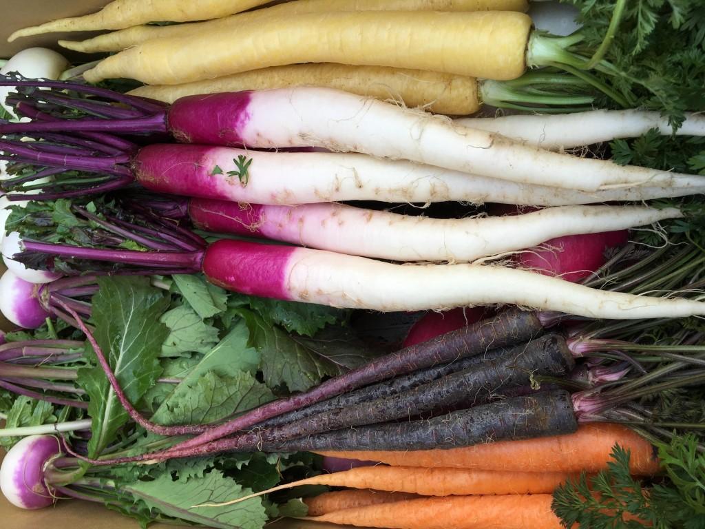 青木農園さんの美しい野菜たち